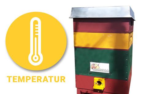 Bienenstock  - Temperatur