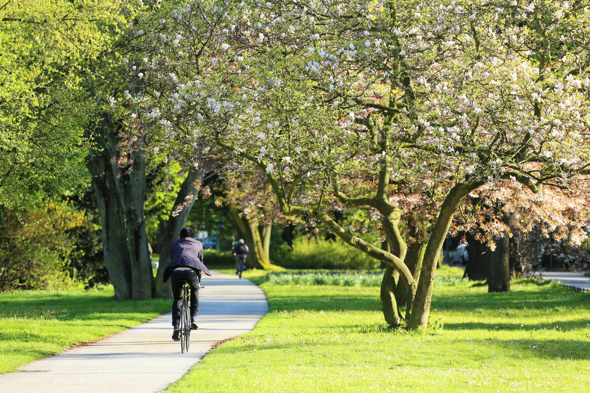 Radfahren im Alsterpark