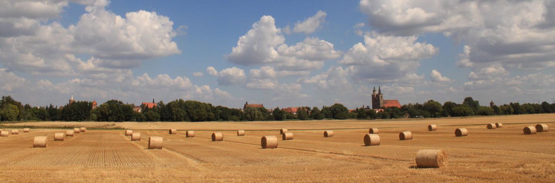 Erntezeit im Fläming südlich von Jüterbog