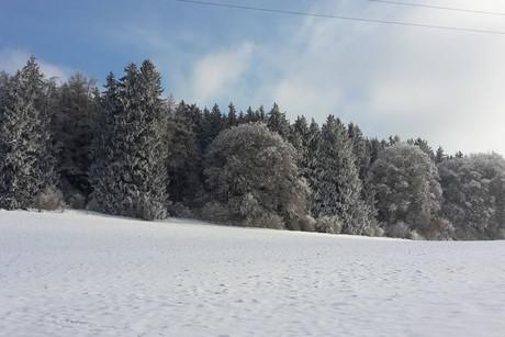 Mayerhof - Winterferien