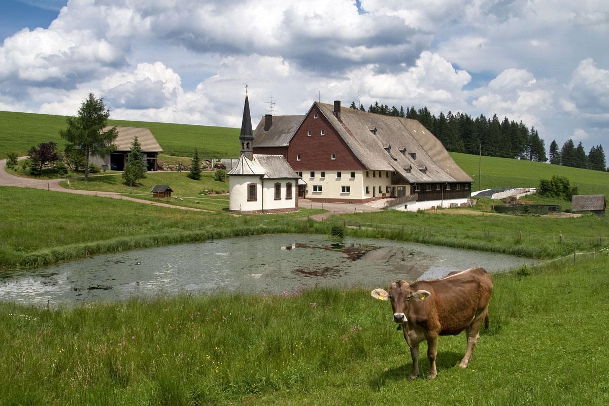 Bauernhaus im Schwarzwald