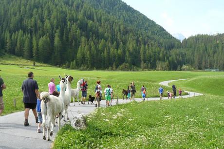 Alpin Appart - Familienurlaub im Herbst