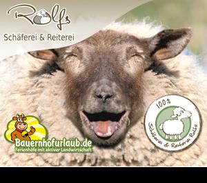 Gewinnspiel - Shaun das Schaf - der Film