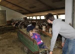 Erlebnisbauernhof Achatz im Bayerwald: Familienurlaubstraum