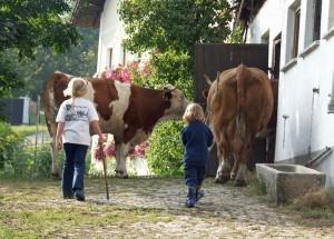 Der 4****Pfefferhof im Bayerischen Wald – ein Bilderbuchparadies für Familien!