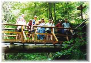 Auf der Waldbrücke auf dem  Bauernhof Gründinger