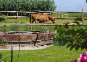 Ferien auf einem aktiven Bauernhof am Wattenmeer an der Nordseeküste