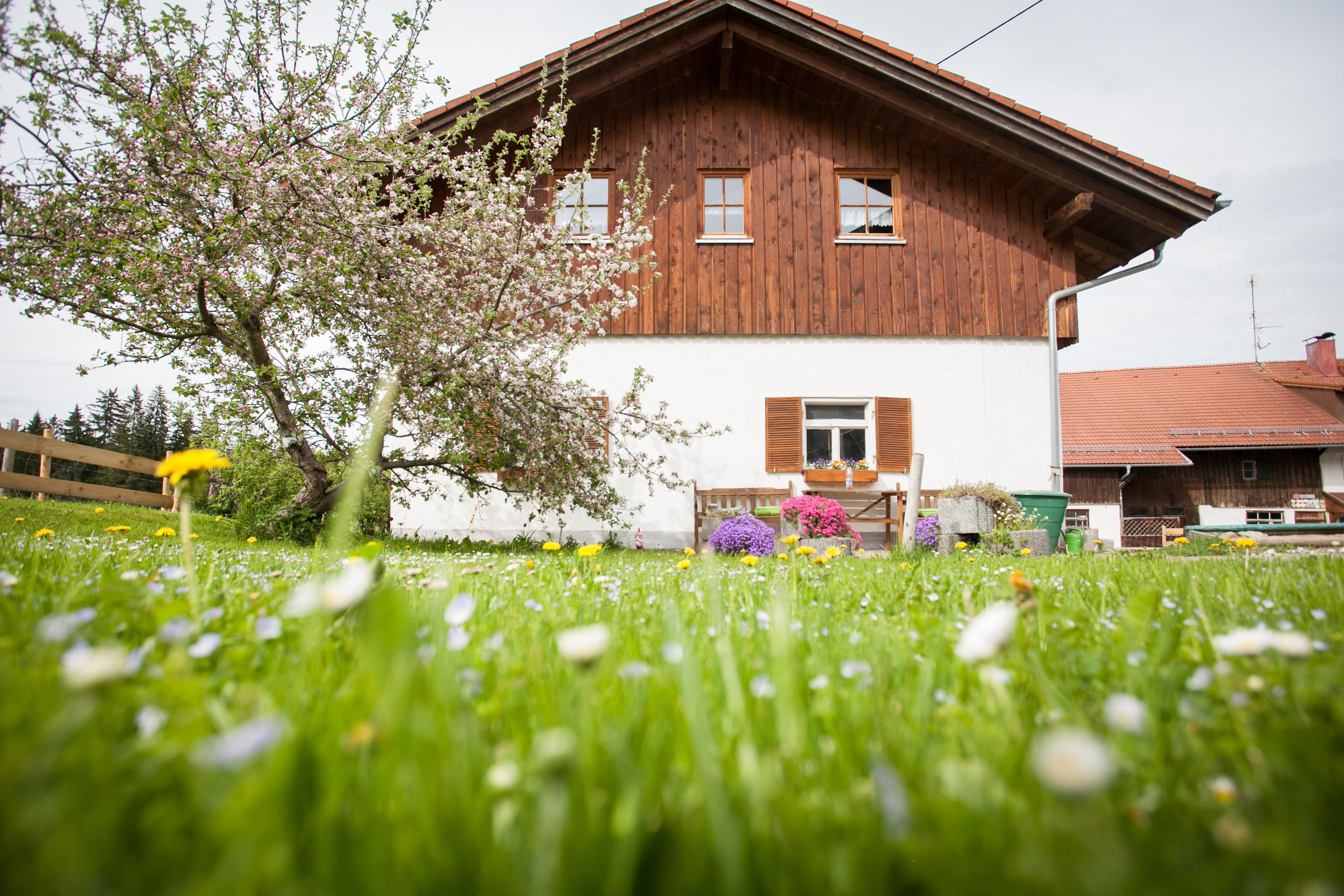 Herrliche ostallg u wandertouren vom bauernhof schm lz in nesselwang - Bauernhof garten ...