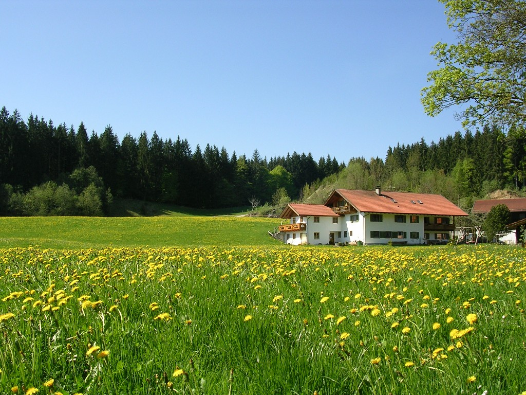 Hof inmitten schönster Landschaft - © Ferienhof Dürr