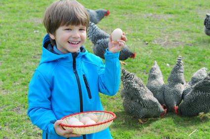 Bauernhofferien – das angesagte Urlaubsparadies für Kinder und Familie