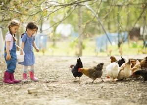 Urlaub auf dem Bauernhof: die ersten Ferien ohne Eltern