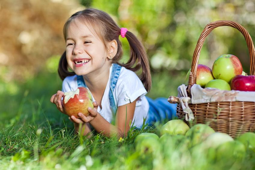 Mädchen bei der Apfelernte