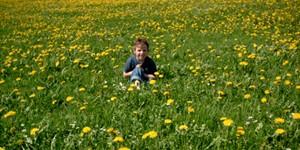 Kinderbauernhof Hindelang Frühlingsangebote