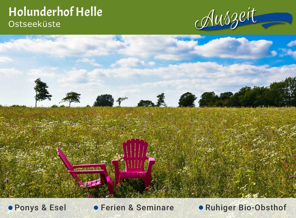 Holunderhof Helle - Jubiläumstipp