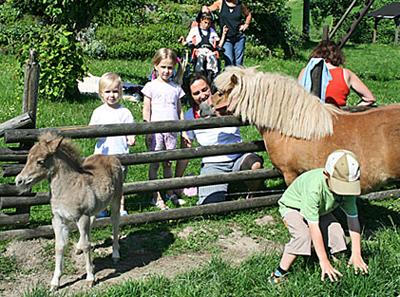 Kinder-Erlebnisurlaub auf dem Ferienbauernhof Stratmann im Hochsauerland