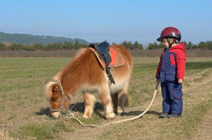 Junger Reiter mit Pony
