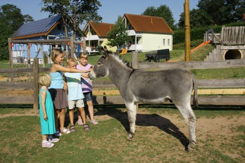 Kinderparadies und Wellnesshof