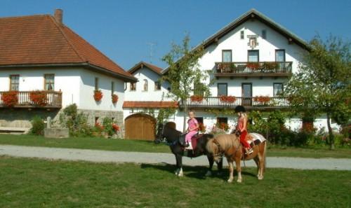 Ponyreiten auf dem  Bauernhof Gründinger