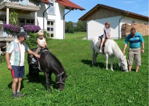 Aktive Landwirtschaft erleben auf dem Ferienbauernhof Kilger im Bayerischen Wald
