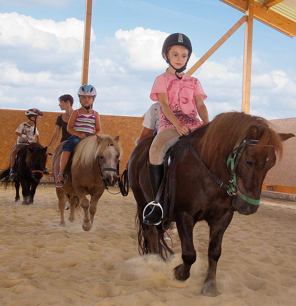 Reiter und kinderparadies landhaus schulte g bel im sauerland for Die kinder des