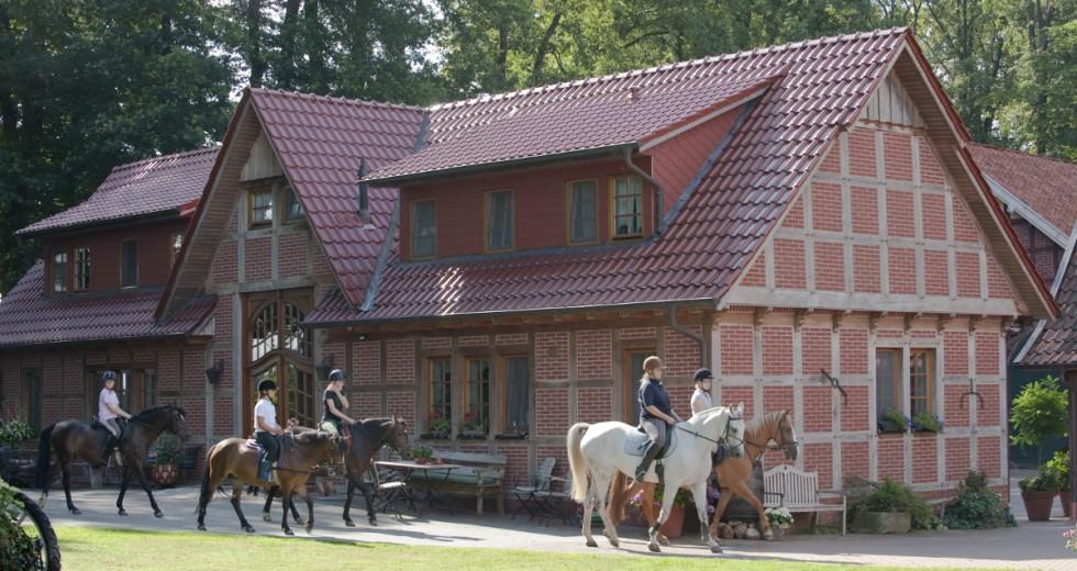 Herbsturlaub im Osnabrücker Land auf dem Reiterhof Eilfort