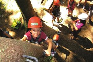 Persönlicher Tipp vom Springerhof – Der Wildpark und Waldseilgarten Oberreith