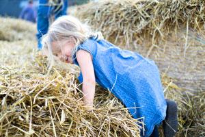 Spielscheunen – Das Kinderhighlight auf dem Bauernhof