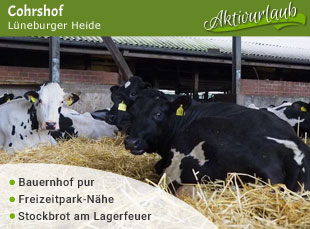 Chorshof - Jubiläumstipp