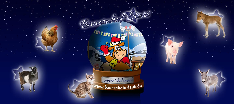 Bauernhof-Stars Adventskalender