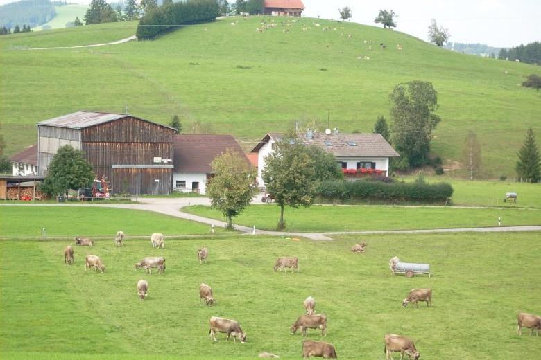 Erlebnisreicher Rad- und Wanderurlaub im Ostallgäu – der Ferienhof Klöck in Roßhaupten