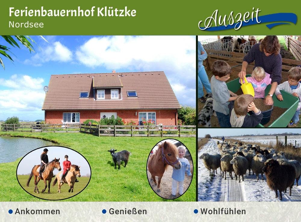 Ferienbauernhof Klützke - Jubiläumstipp