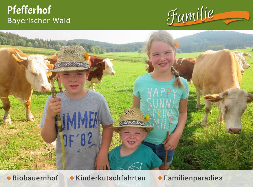 Pfefferhof - Jubiläumstipp