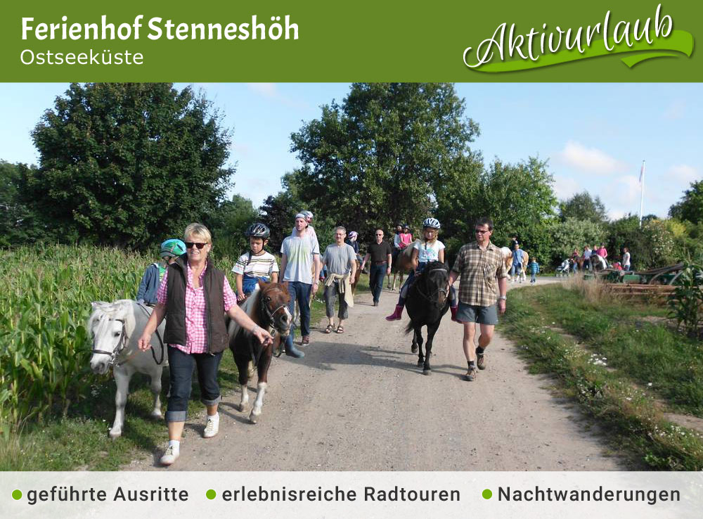 Ferienhof Stenneshöh - Jubiläumstipp