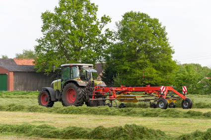 Einmal beim Bauern auf dem Traktor mitfahren - ein Kindheitstraum!